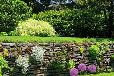 Photograph - Garden Scene by Sally Weigand