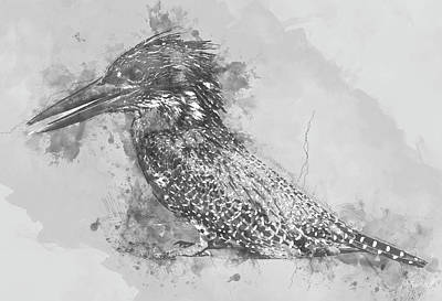 Digital Art - Giant Kingfisher by Petrus Bester