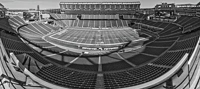 Recently Sold - Animals Royalty-Free and Rights-Managed Images - Gillette Stadium by Robert Hayton