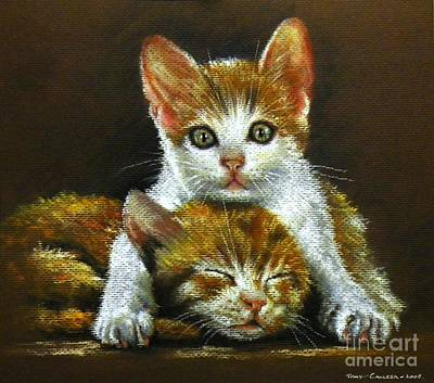 Pastel - Ginger Cats by Tony Calleja