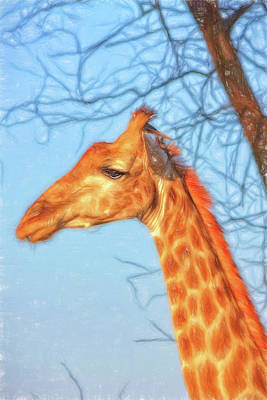 Photograph - A Painterly Giraffe by Kay Brewer