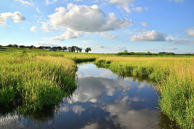 Photograph - Glacial Park Wetland Reflection by Ray Mathis