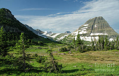 Photograph - Glacier National Park by Nick Boren