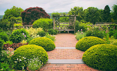 Photograph - Glorious Garden by Jessica Jenney