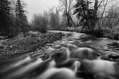 Photograph - Go With The Flow by Ted Raynor