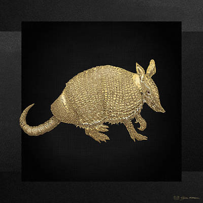 Gold Armadillo On Black Canvas Art Print