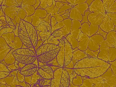 Photograph - Gold Leaf by Kevin Bohner