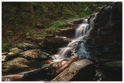 Gold Mine Creek Falls  Art Print