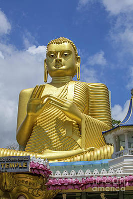 Photograph - Golden Buddha by Patricia Hofmeester