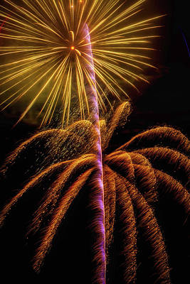 Golden Fireworks Art Print