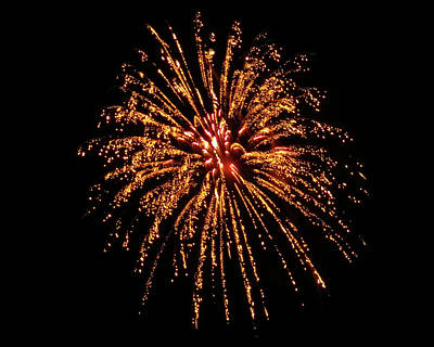 Photograph - Golden Fireworks by Kyle J West