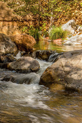 Photograph - Golden Light On Oak Creek by Teresa Wilson