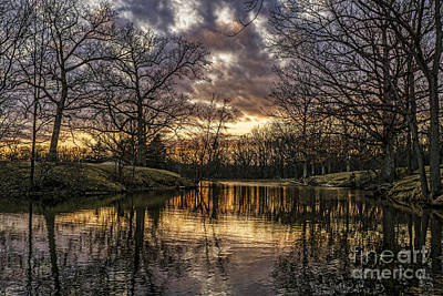 Photograph - Golden Sunset by Scott Wood