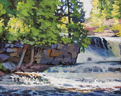 Gooseberry Falls Art Print by Larry Seiler
