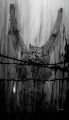 Photograph - Gothic Guardian Bw by Lesa Fine