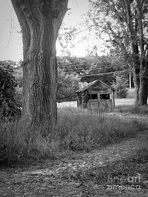 Photograph - Gramma's Shed by Jenness Asby