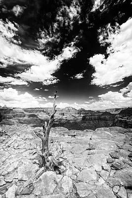 Photograph - Grand Canyon Landscape by Alex Conu