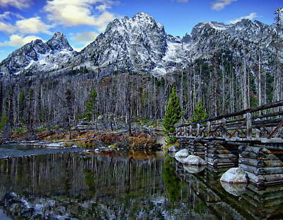 Photograph - Grand Teton National Park by Anthony Dezenzio