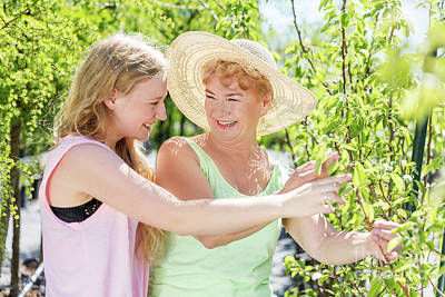 Charming Photograph - Granddaughter And Grandmother Spending Time In A Summer Garden. by Michal Bednarek