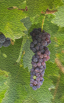 Painting - Grape Fruit by Jessica Nguyen