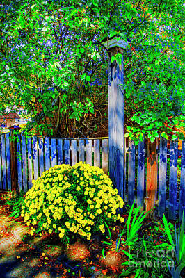Photograph - Gray Fence by Rick Bragan