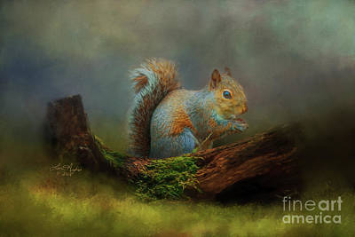 Digital Art - Squirrel by Lena Auxier