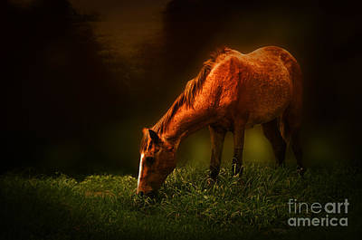 Grazing Art Print by Charuhas Images