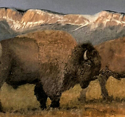 Painting - Great American Bison by Jessica Anne Thomas