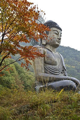 Photograph - Great Buddha In Autumn by Michele Burgess