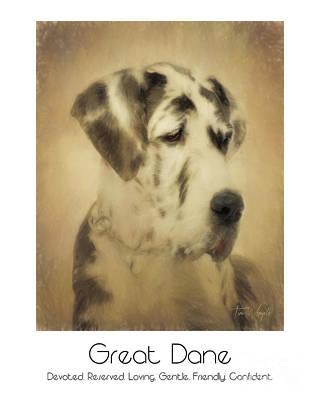 Digital Art - Great Dane Poster 2 by Tim Wemple