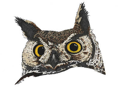 Great Horned Owl Drawing - Great Horned Owl by Marcus England
