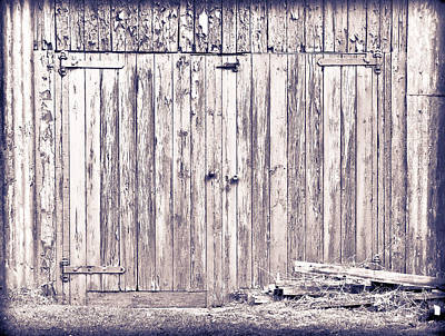 Green Barn Door Art Print