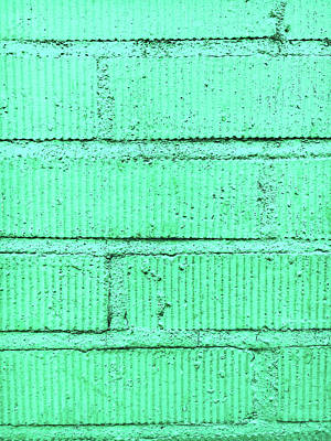 Color Block Photograph - Green Brick Wall by Tom Gowanlock