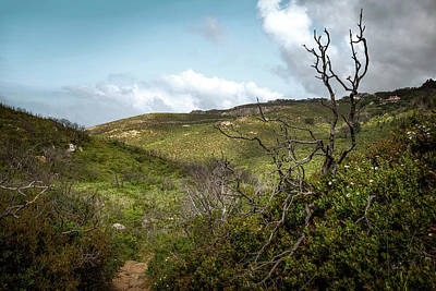 Photograph - Green Hills by Carlos Caetano