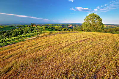 Photograph - Green Landscape Of Medjimurje Region View From Hill by Brch Photography
