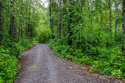 Photograph - Green Paradise by Jennifer White