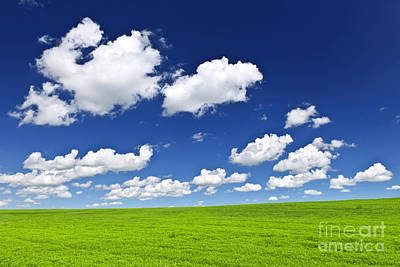 Green Rolling Hills Under Blue Sky Art Print