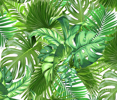 Flower Works Photograph - Green Tropic  by Mark Ashkenazi