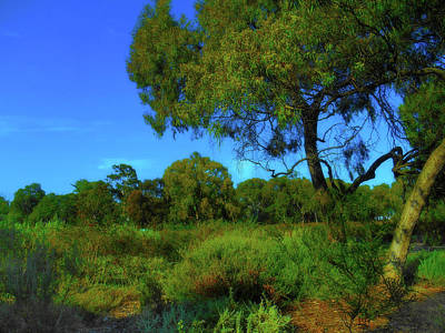 Photograph - Green World by Mark Blauhoefer