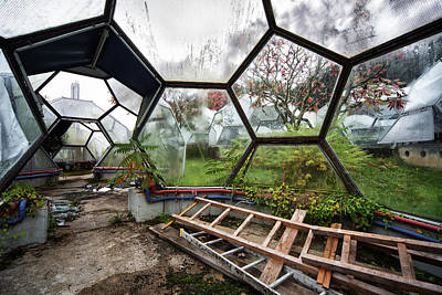 Greenhouse Experiment - Urban Decay Art Print