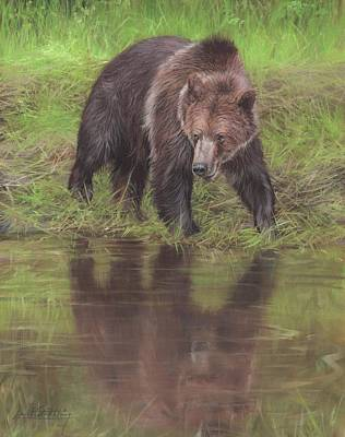 Grizzly Bear At Water's Edge Art Print