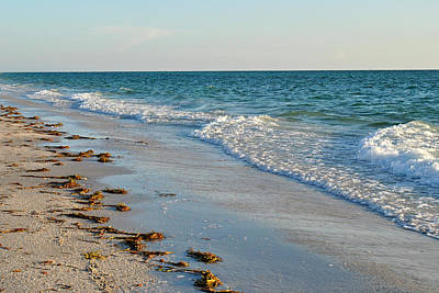 Gulf Of Mexico Beach Art Print by Steven Scott
