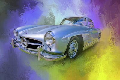 Photograph - Gullwing by Ches Black