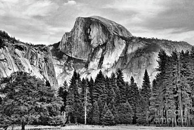Photograph - Half Dome Black White Yosemite  by Chuck Kuhn