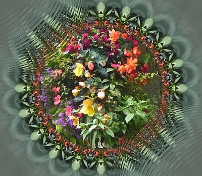 Photograph - Hanging Basket by Nancy Pauling