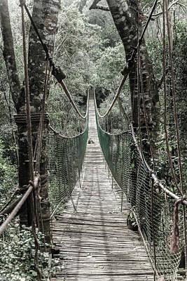 Photograph - Hanging Bridge by Alexey Stiop