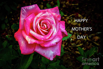 Gift Tag Photograph - Happy Mother's Day by Robert Bales