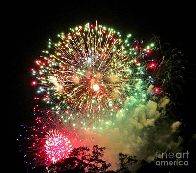 Photograph - Happy New Year by Tim Townsend