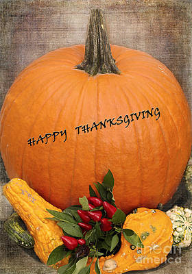 Photograph - Happy Thanksgiving by Nina Silver