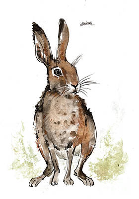 Painting - Hare 2018 05 19 by Angel Ciesniarska